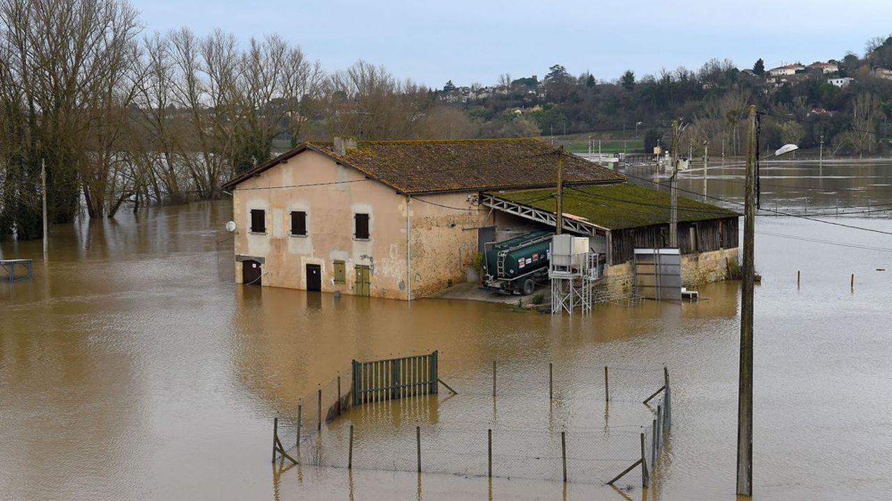 PartnerRe, qui assure les assureurs dans des cas de sinistres importants comme les inondations, appartient à Exor, le holding des Agnelli.