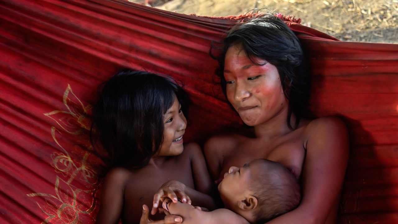 Déjà menacées de disparition par la décision du gouvernement brésilien d'ouvrir plus largement l'Amazonie à l'exploitation forestière, les tribus amérindiennes sont à très haut risque face au Covid-19. Les Waiapi (photo: une femme Waiapi et ses enfants) ont tenté de faire de la résistance face à l'ouverture de leur réserve aux compagnies minières.