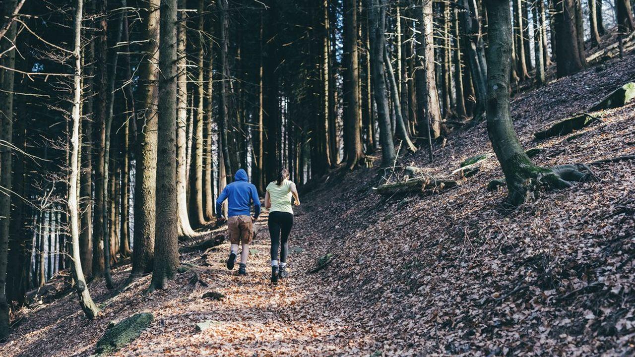 Dans le Val-d'Oise, les services de police et de gendarmerie ont observé le week-end dernier un regain d'affluence dans l'espace public, notamment les forêts