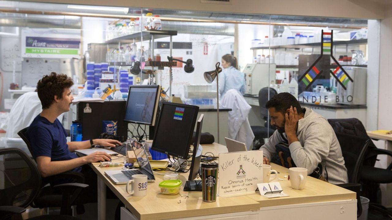 Des salariés d'IndieBio travaillant dans un co-working à San Francisco.
