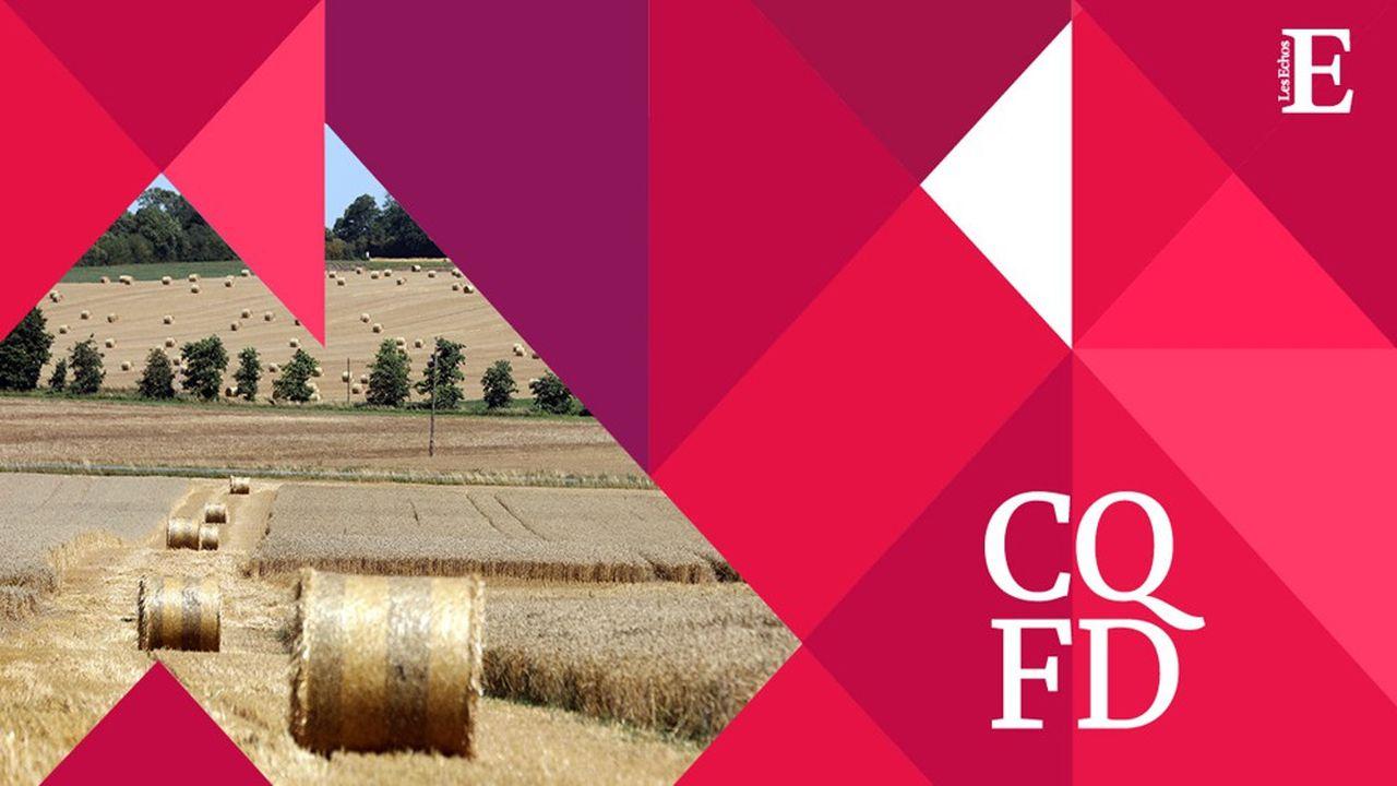 L'Hexagone est toujours la première puissance agricole de l'Union européenne, avec un chiffre d'affaires de 72,6milliards d'euros en 2018.