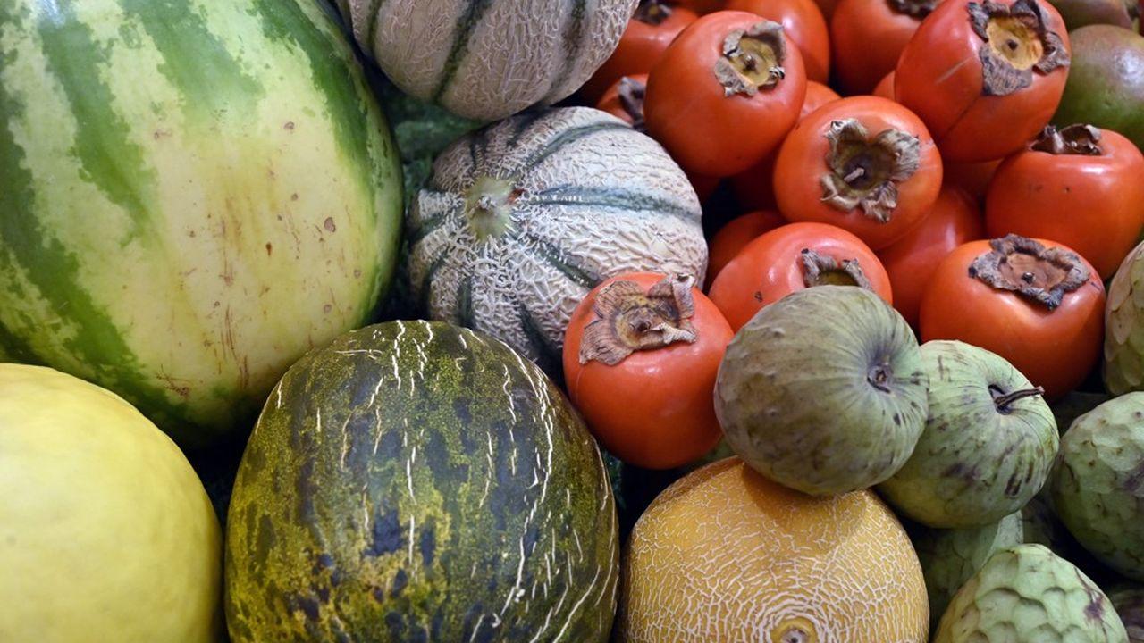 Le département du Gard a conclu un partenariat avec le Mas des Agriculteurs et la Banque alimentaire.