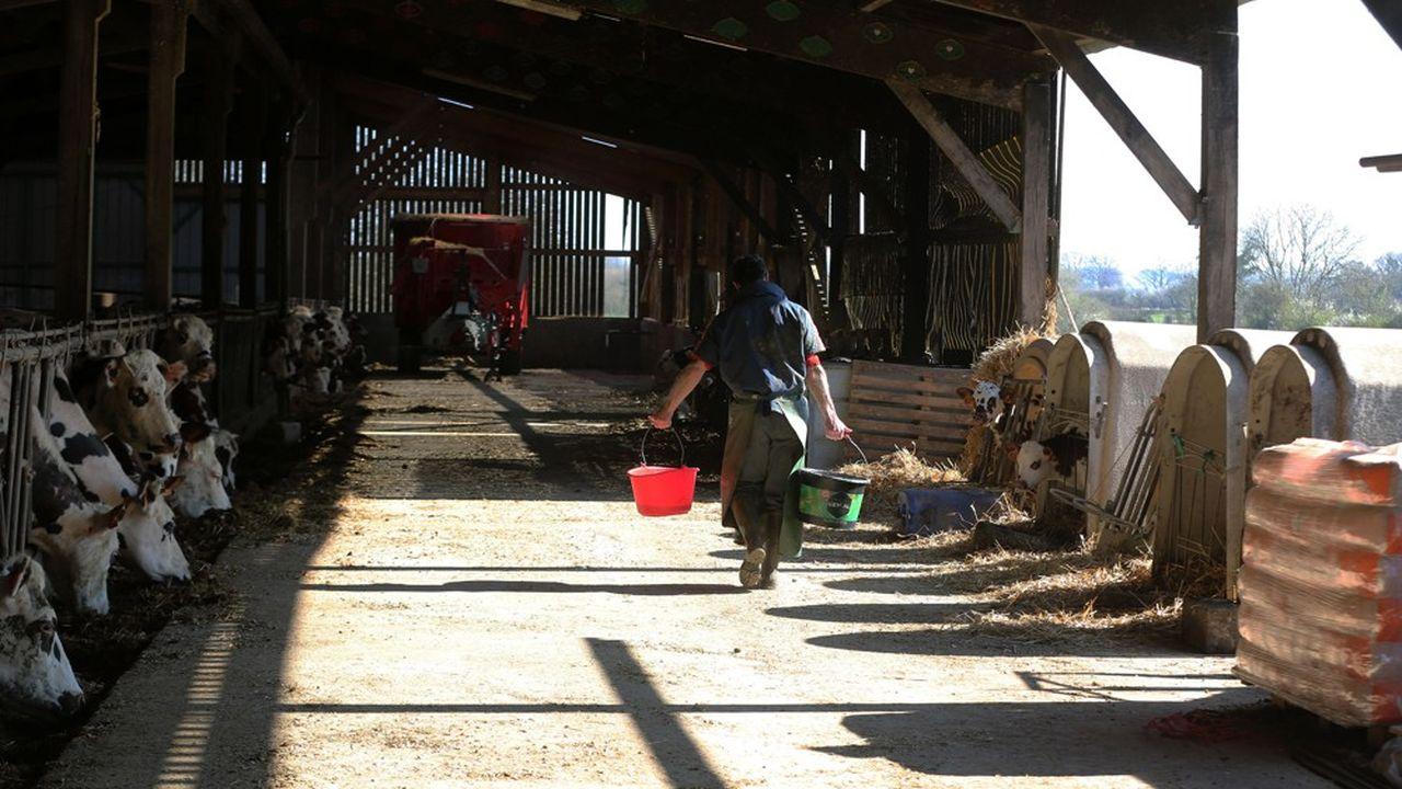 «On a encouragé les éleveurs à lever le pied sur la production. On a ouvert au maximum toutes nos capacités industrielles et fait des arbitrages».