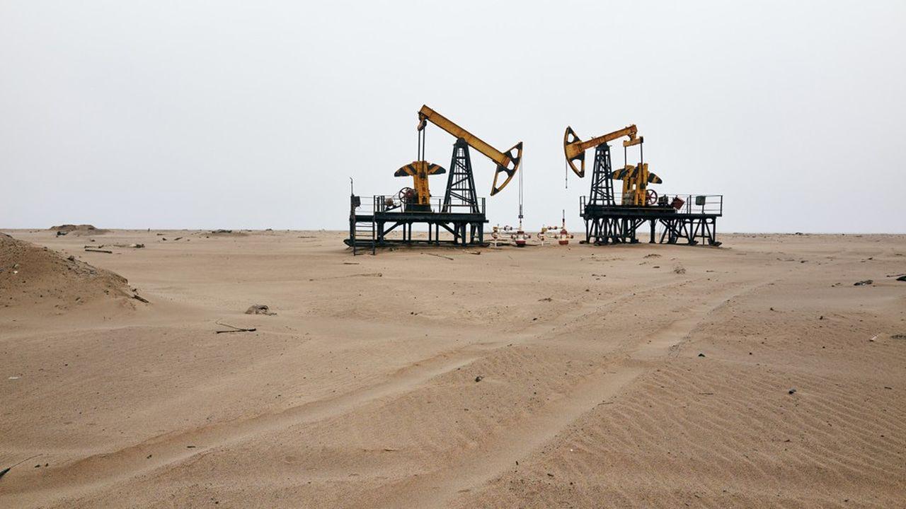 Le prix du baril de Brent de la Mer du nord pour livraison en juillet a atteint les 30,08dollars ce mardi.