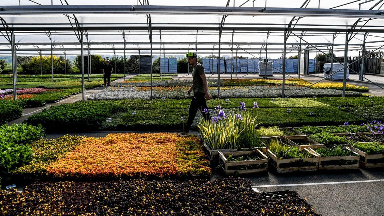 Les agriculteurs ont subi d'importantes pertes financières en raison notamment de l'arrêt des ventes aux pépiniéristes et horticulteurs et de l'interruption brutale des activités d'agro-tourisme