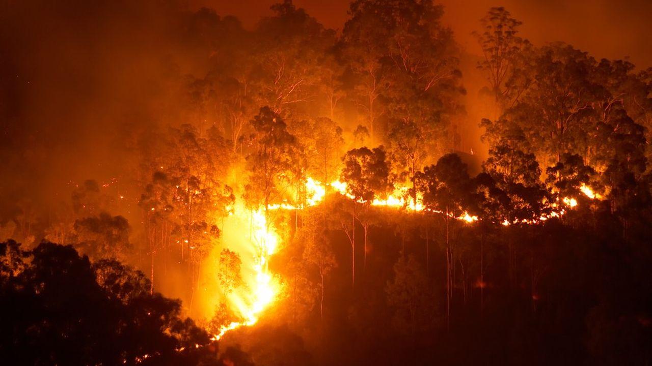 Des feux de forêt plus fréquents et plus dévastateurs sont l'une des conséquences du changement climatique.