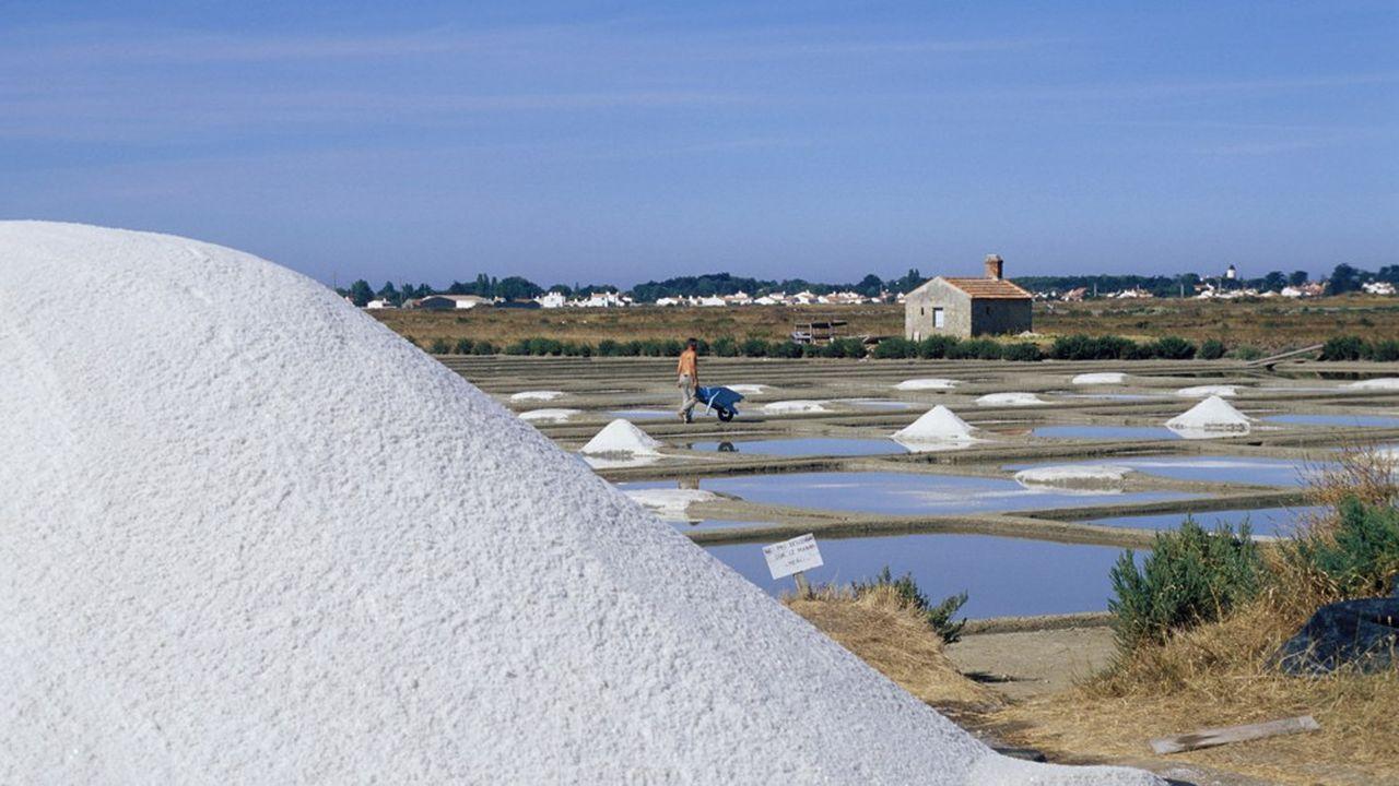 En Vendée, ici sur l'île de Noirmoutier, les professionnels craignent la désaffection des étrangers, notamment des Britanniques, si les frontières devaient rester fermées et les moyens de transport limités.