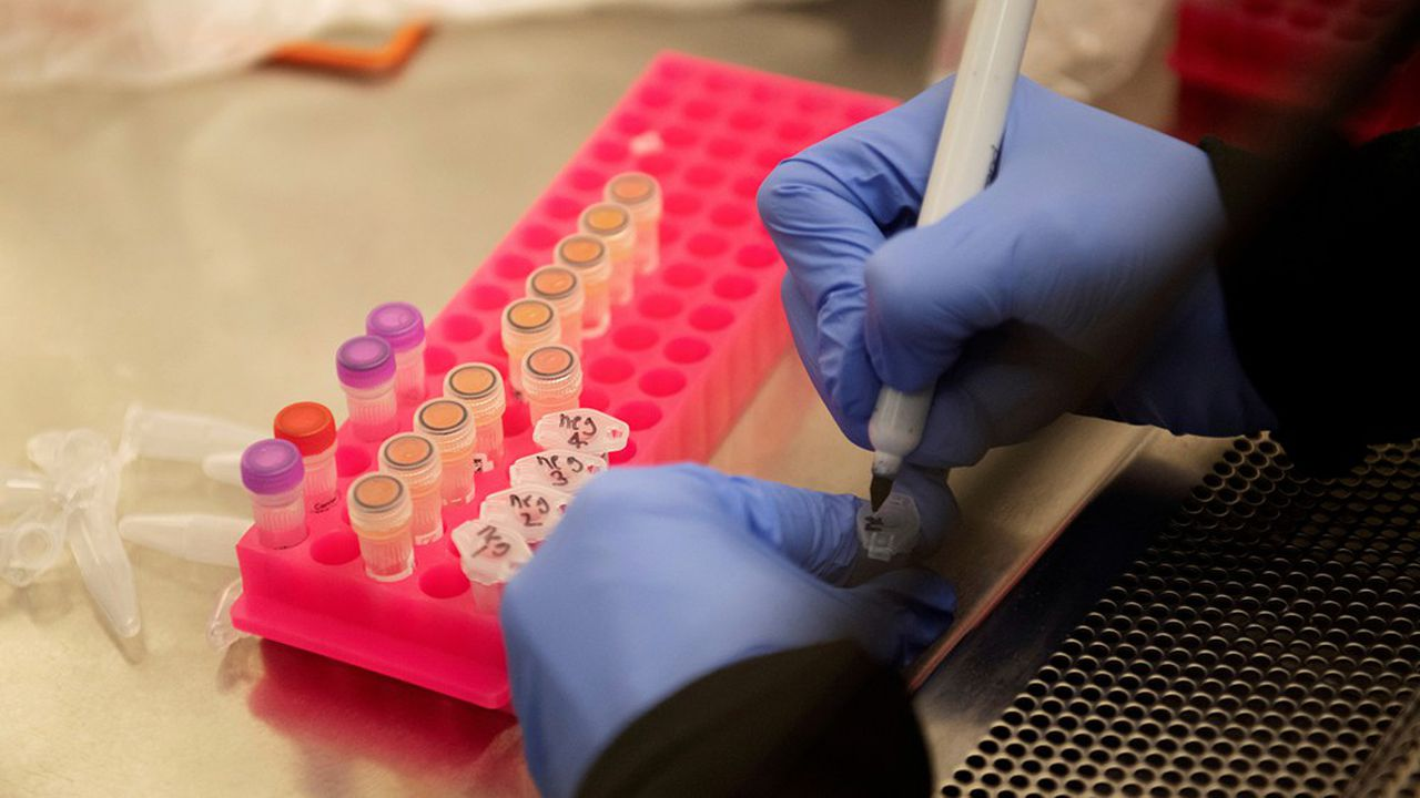 L'OMS avait lancé il y a plus de deux mois ses essais cliniques, baptisés «Solidarité», en partenariat avec plusieurs pays.