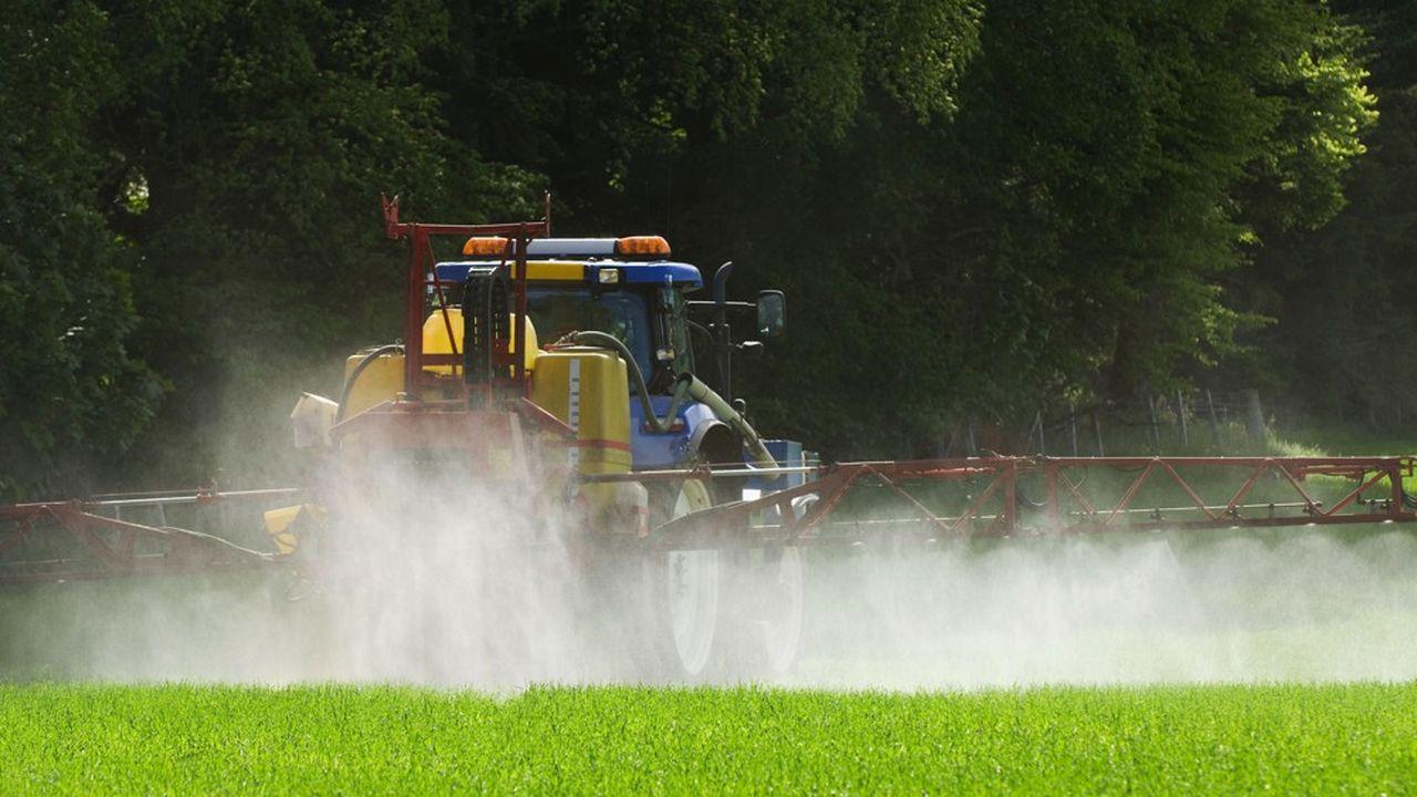 Entre mai et septembre2019, les élus ont pris des arrêtés limitant l'usage des pesticides et du glyphosate dans leurs communes.