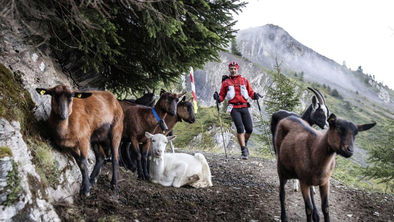 L'UTMB Mont-Blanc est organisé chaque année à Chamonix, en Haute-Savoie.