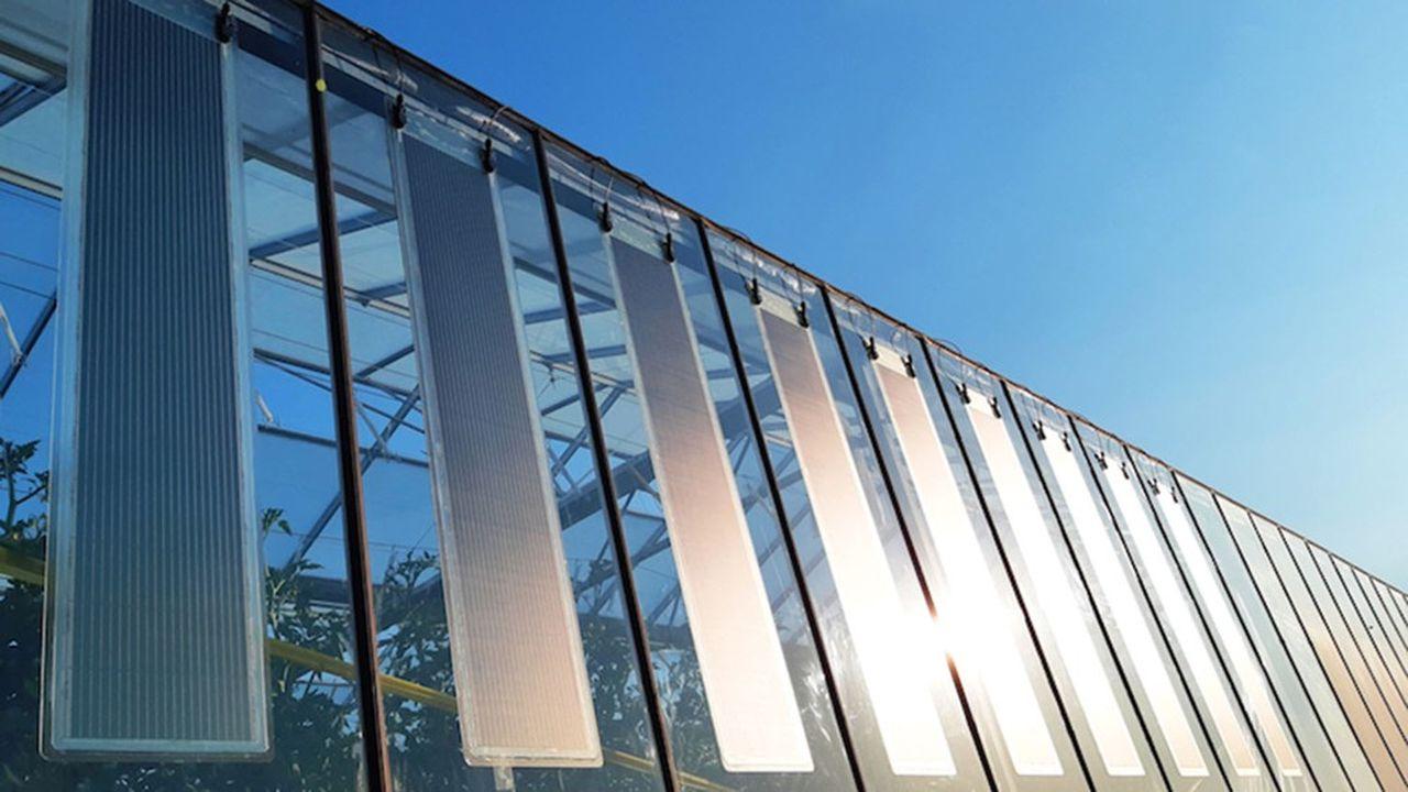 Armor, l'un des premiers industriels capables de produire à grande échelle ce nouveau matériau muticouches composé d'une pellicule photoactive en polymère.
