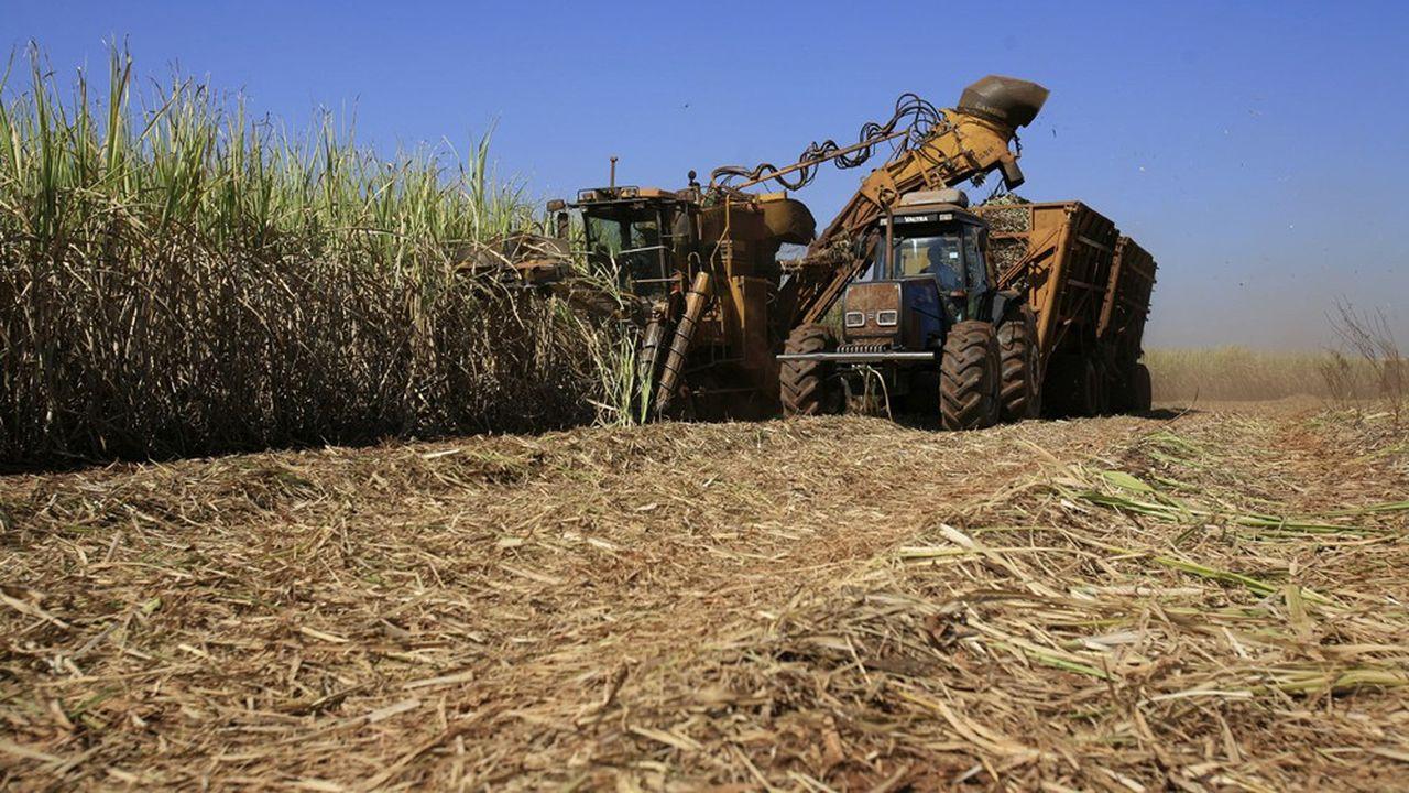 La moitié du résultat opérationnel du sucre chez Tereos se fait en dehors de l'Union européenne.