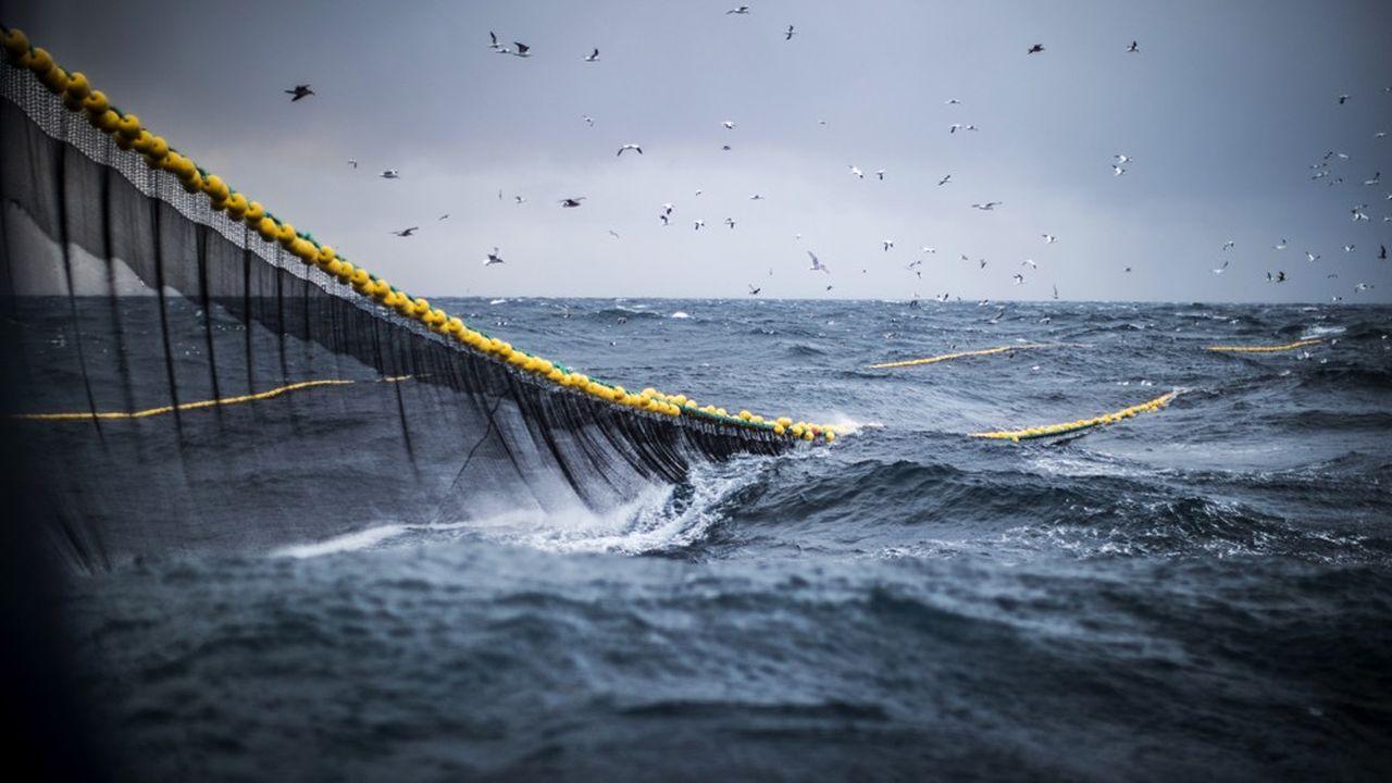 Les déchets issus de la pêche forment 10% de la pollution des océans avec les plastiques, et même un tiers dans les eaux européennes.