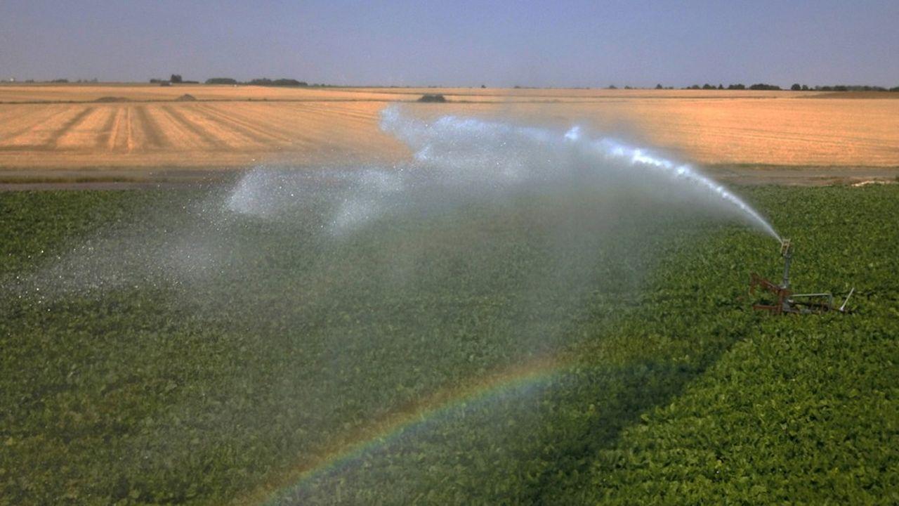 En juillet2019, la sécheresse avait entraîné la mobilisation massive de canons à eau pour irriguer les terres agricoles.