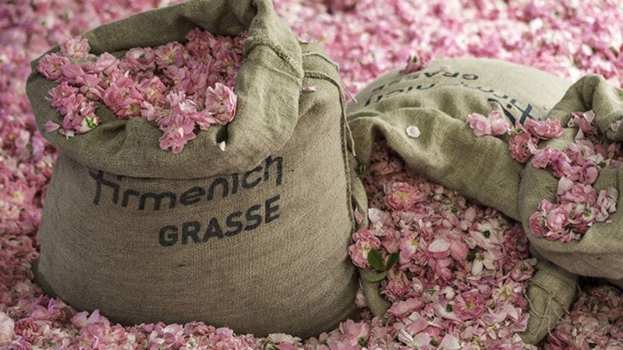 Firmenich, le leader mondial des ingrédients pour la parfumerie, vient de finaliser le rachat du landais DRT signé début mars, juste avant le tourbillon de la pandémie.
