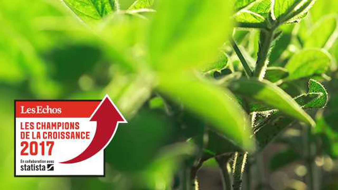 Les champions de la croissance 2017 dans l'agriculture et l'agroalimentaire
