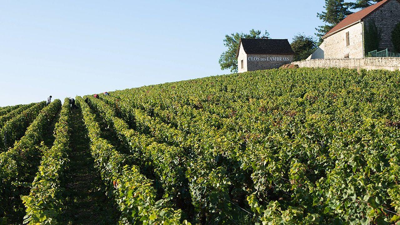 Le Clos des Lambrays, un vin mythique au coeur de la Bourgogne.