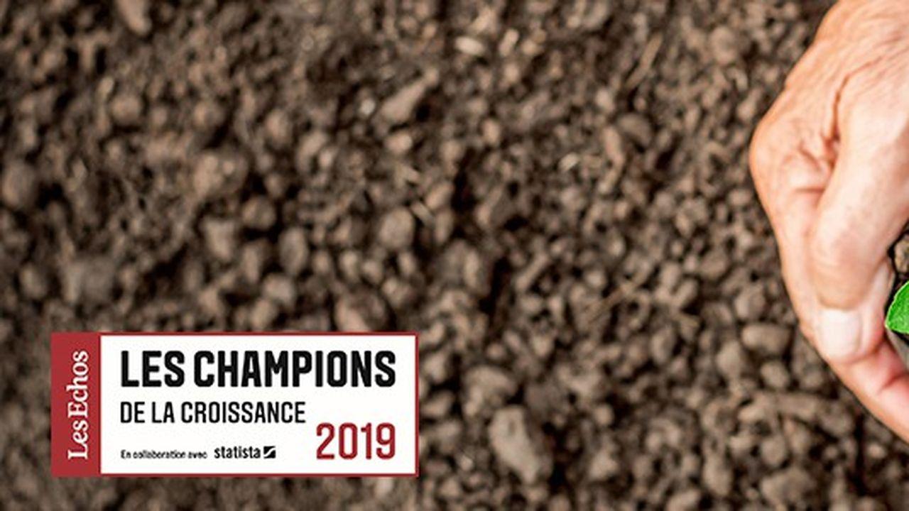 Les Champions de la croissance 2019 dans l'environnement