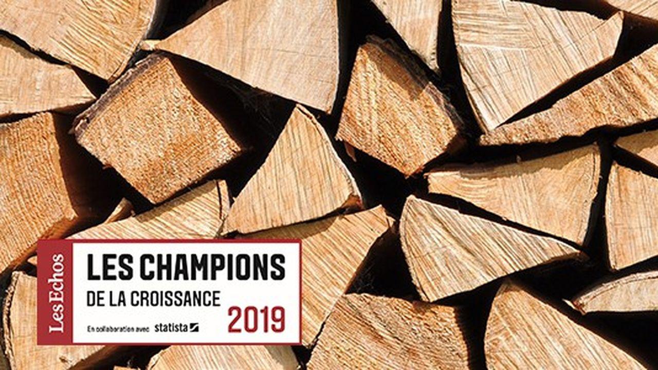 Les Champions de la croissance 2019 dans les énergies