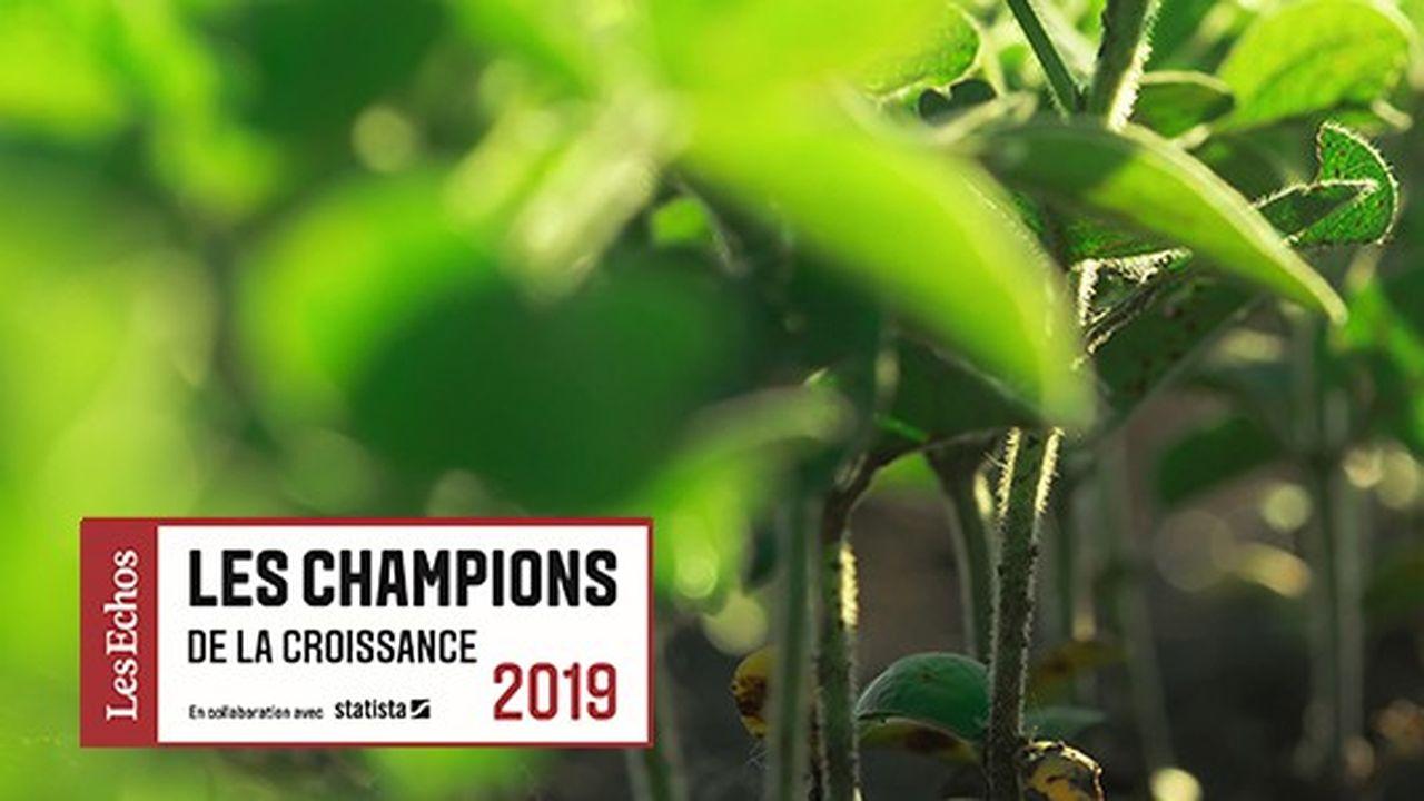 Les Champions de la croissance 2019 dans l'agriculture et l'agro-alimentaire