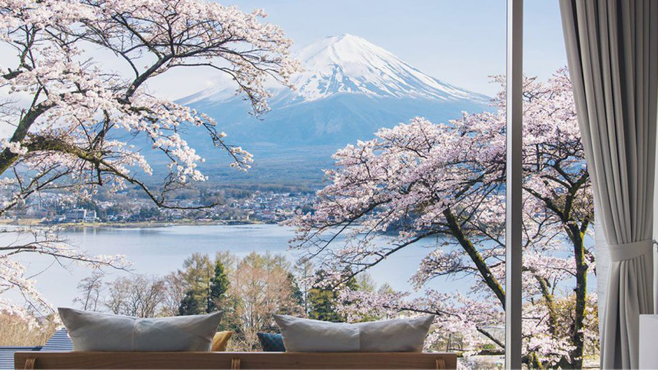 Le repaire: Hoshinoya Fuji, en sylvothérapie