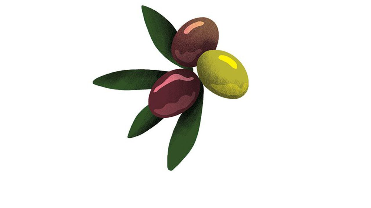 Top 5: les meilleures olives de table