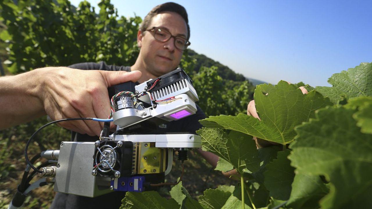 Les sécheresses répétées ont amené les viticulteurs à utiliser de nouveaux outils pour iriguer les vignes.