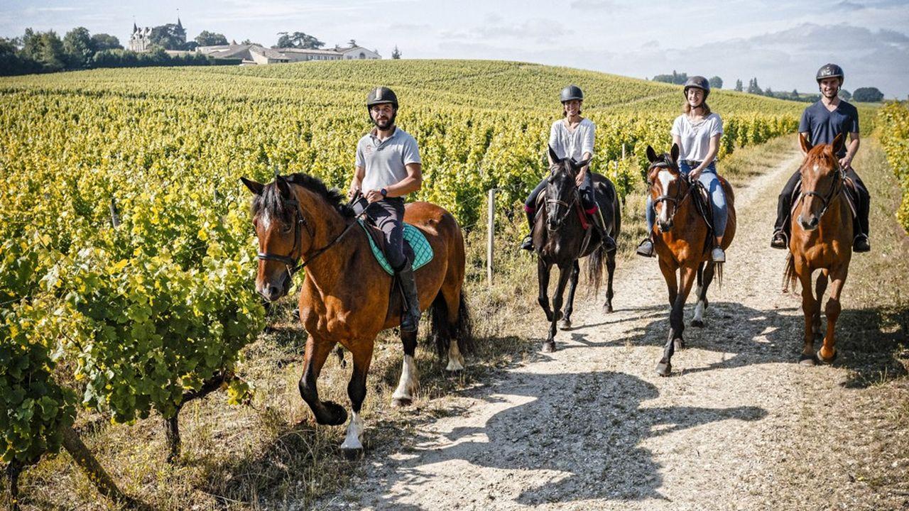 Ballade a cheval dans les rangs de vignes, vignoble du domaine, 1er Grand Cru classe 1855 de Sauternes.