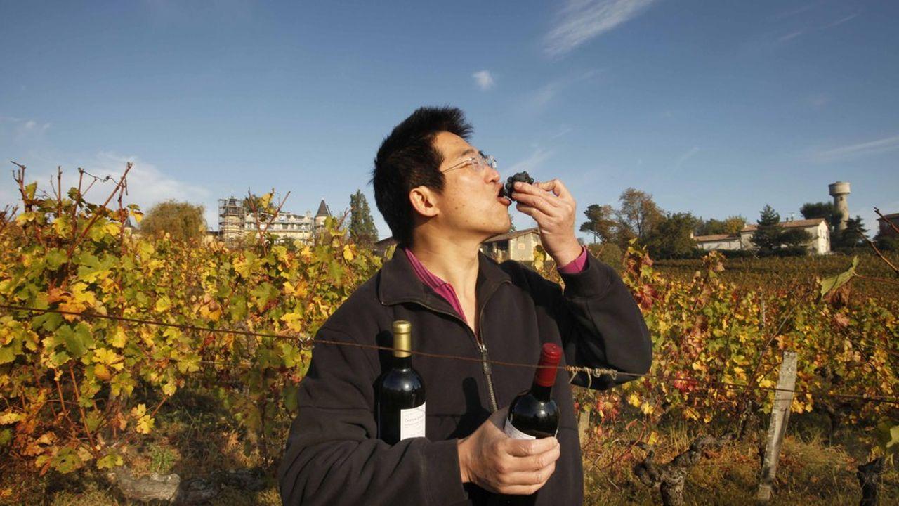 Steve Loo, président de Carlico, un distributeur de vins de Hong Kong, propriétaire du château Lagarosse.