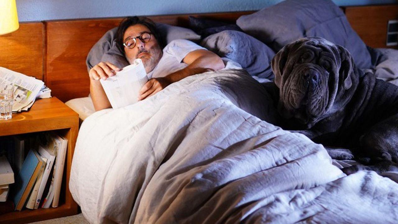 Ecrivain en panne d'inspiration, Henri Mohen (Yvan Attal) se prend d'affection pour un chien abandonné qu'il prénomme Stupide.