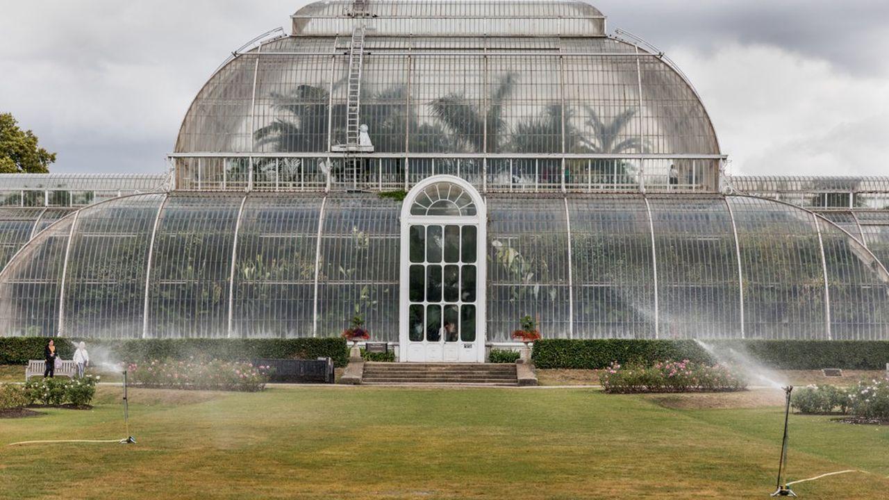 Palm House, serre dédiée aux palmiers édifiée en 1848, qui culmine à 19 mètres de haut.