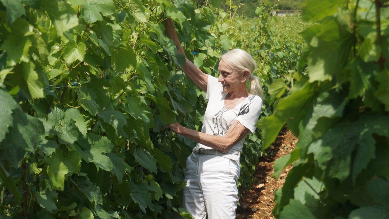 Madame Bize-Leroy dans la vigne du Chevalier Montrachet, vigne du Domaine d'Auvenay
