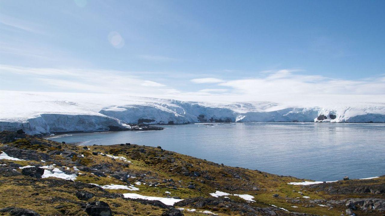 La banquise de l'Antarctique a perdu en quelques années une superficie équivalente à quatre fois la France.