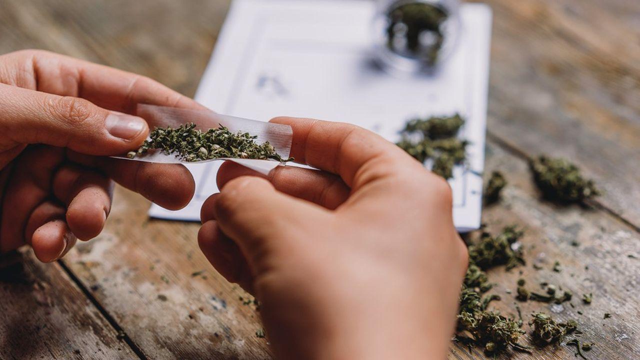 Malgré la loi, les consommateurs de cannabis écopaient rarement de peines d'emprisonnement
