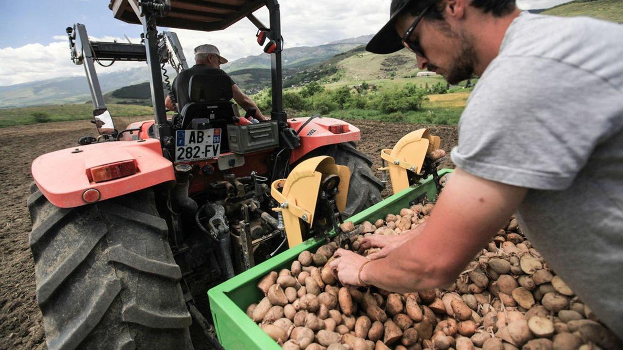 A 700euros, la moyenne des pensions des exploitants agricoles se situe en dessous du seuil de pauvreté.