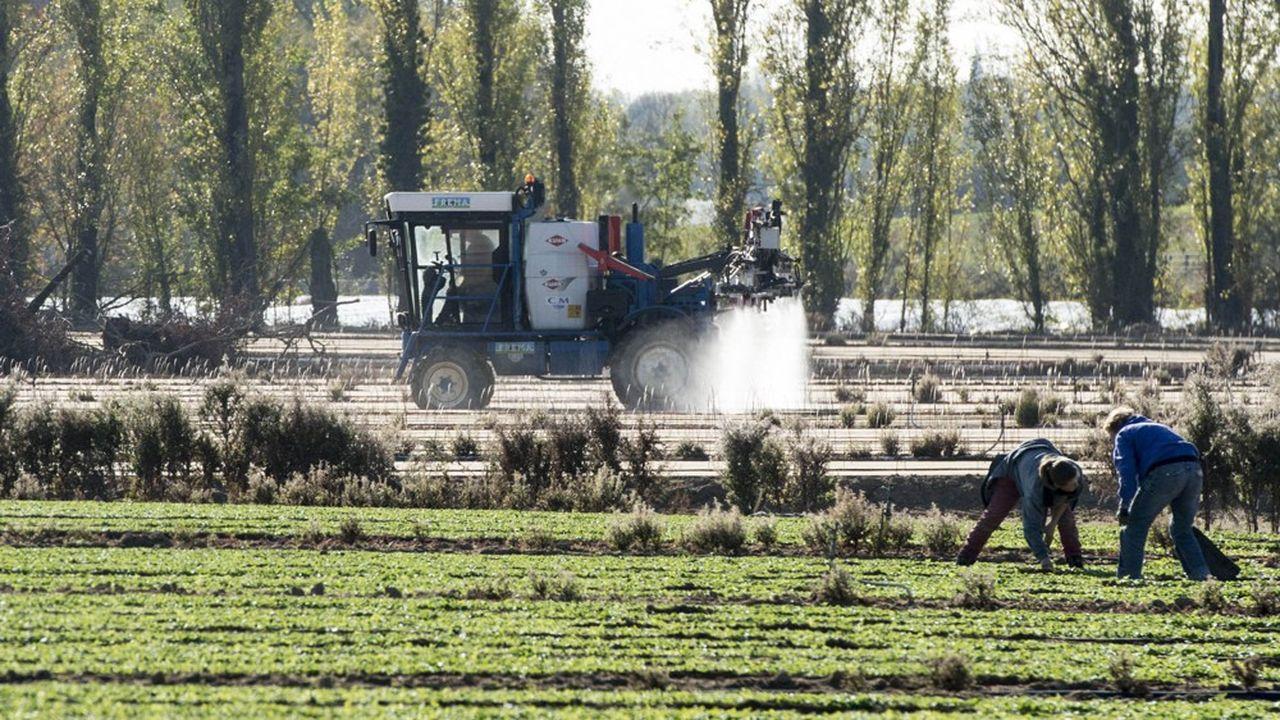 Pour vérifier l'atteinte des objectifs des PSE, quand ils portent sur les nitrates, leur taux dans le sol sera mesuré chaque année à l'automne, avant les grandes pluies hivernales qui entraîne les nitrates dans l'eau des zones de captage des usines de potabilisation.