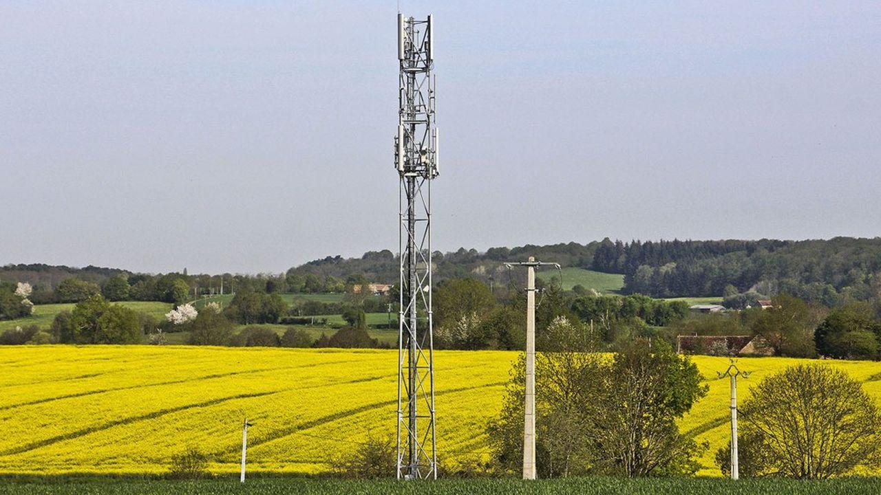 Certains détracteurs de la 5G redoutent des «forêts d'antennes» sur le territoire.
