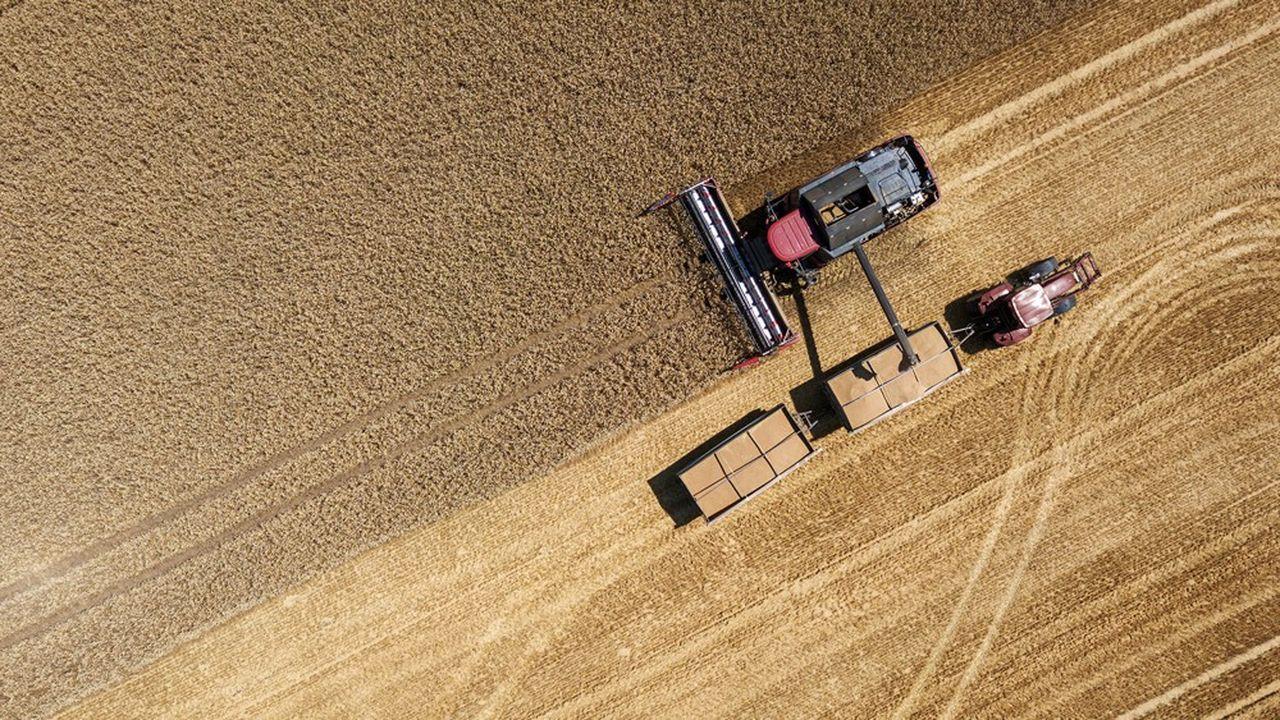 En 2019, l'agriculture mondiale a reçu plus de 500milliards de dollars pour soutenir les prix ou la production.