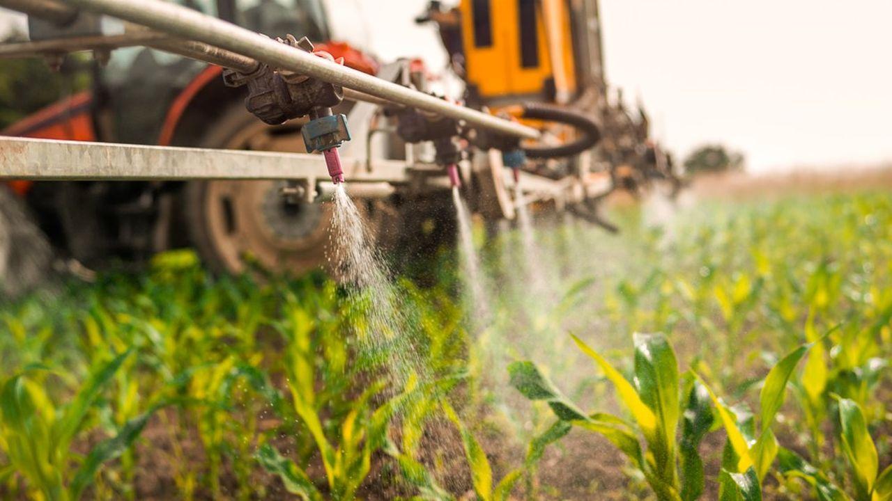 La ministre de la Transition écologique Elisabeth Borne avait indiqué vouloir interdire tous les usages non agricoles des pesticides.