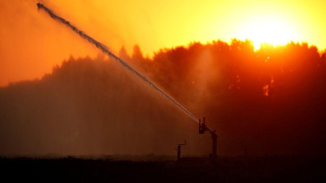 En 2019, la sécheresse a pesé sur diverses productions réduisant le résultat agricole moyen par actif de -8,6%.