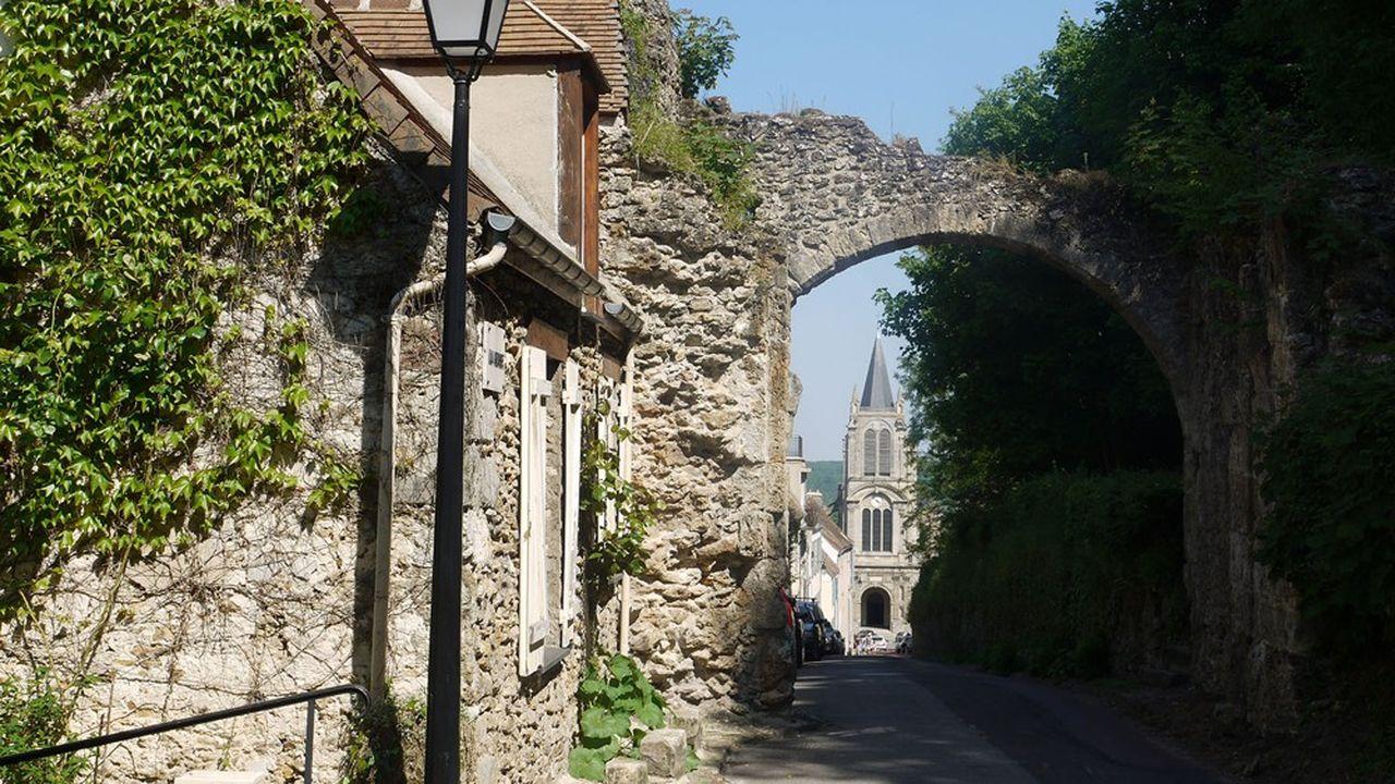 Dans les Yvelines, à côté de villes phares comme Versailles, Saint-Germain-en-Laye et Rambouillet, on y trouve, à moins d'une heure de Paris, des villages de charme prisés comme Montfort-l'Amaury (photo).