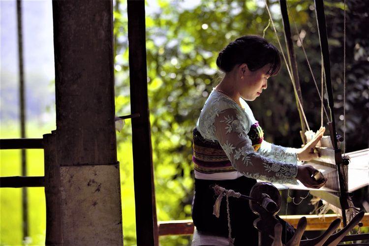 Métier à tisser de la minorité des Thaï blancs au Vietnam.