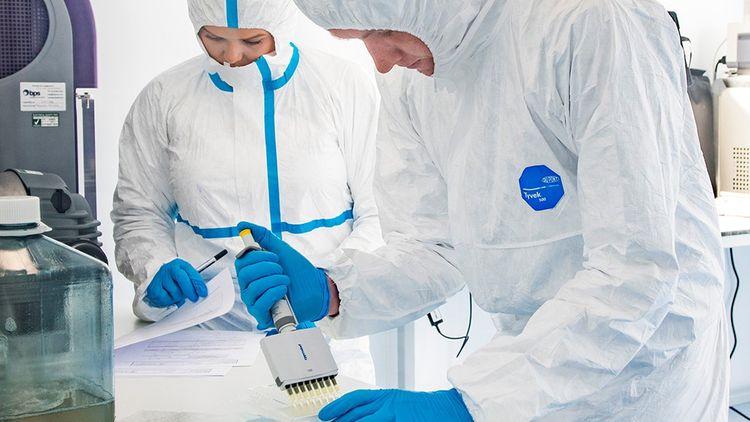 Jellagen, une start-up franco-britannique qui explore notamment le marché de la culture de cellules souches