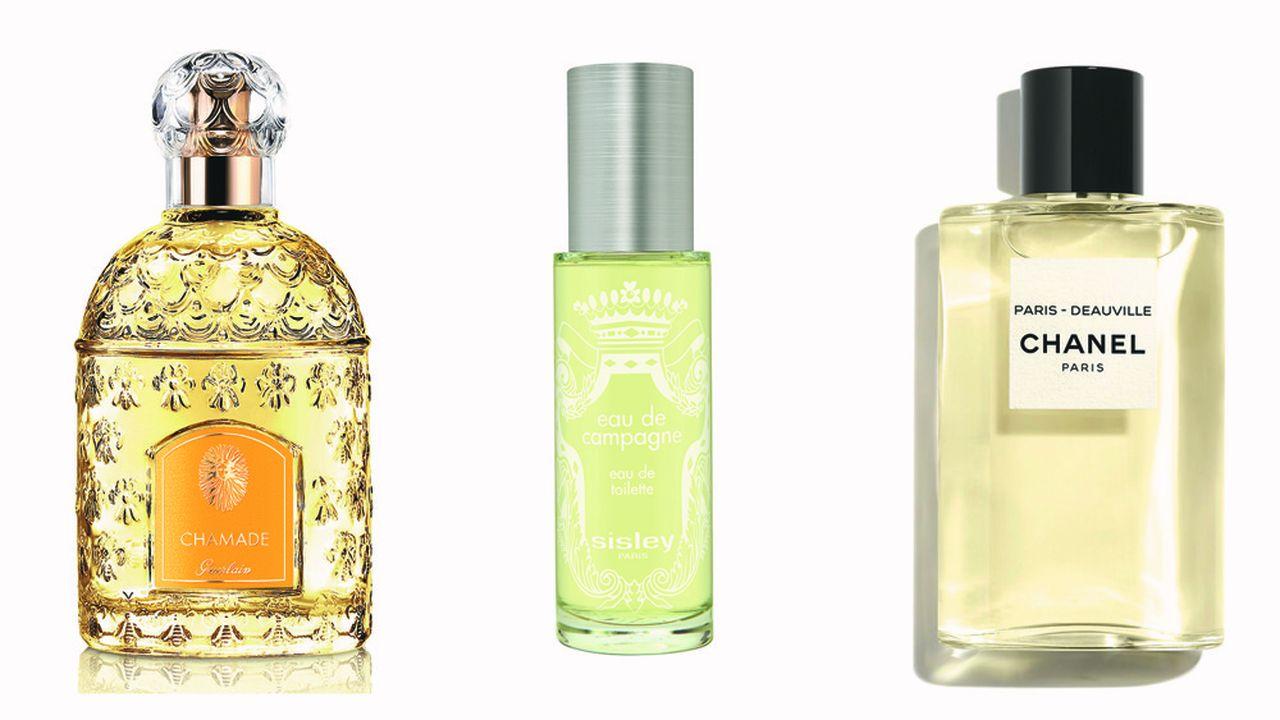 Parfums : le vert a-t-il une odeur ?