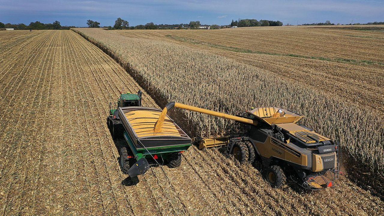 Une récolte de maïs aux Etats-Unis.