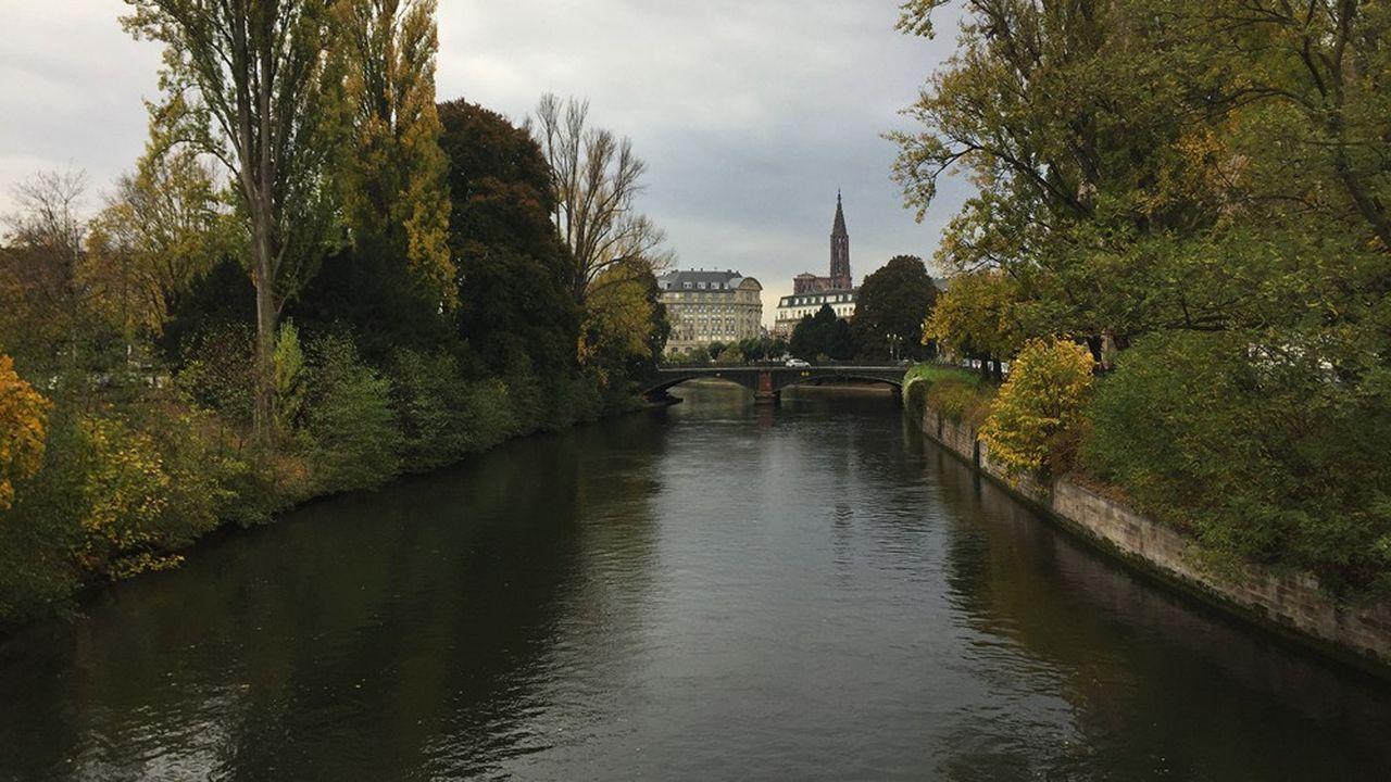 A Strasbourg, jusqu'à présent, le végétal était considéré au mieux comme un accompagnement du bâti.