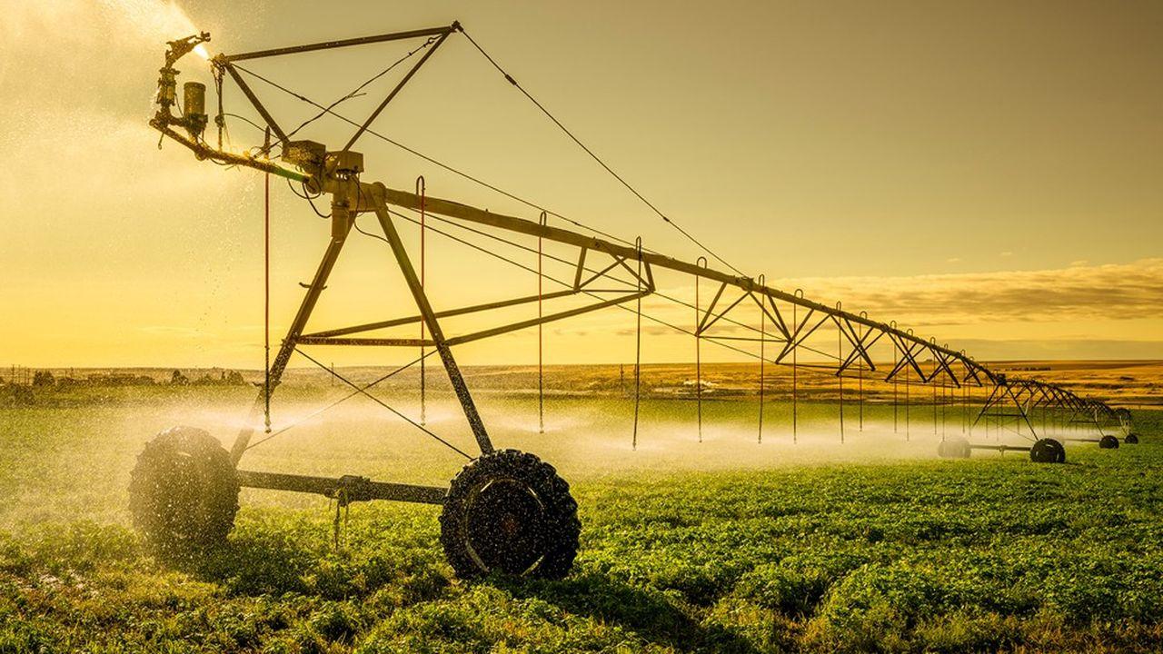 L'agriculture consomme près de 50% de l'eau potable en France.