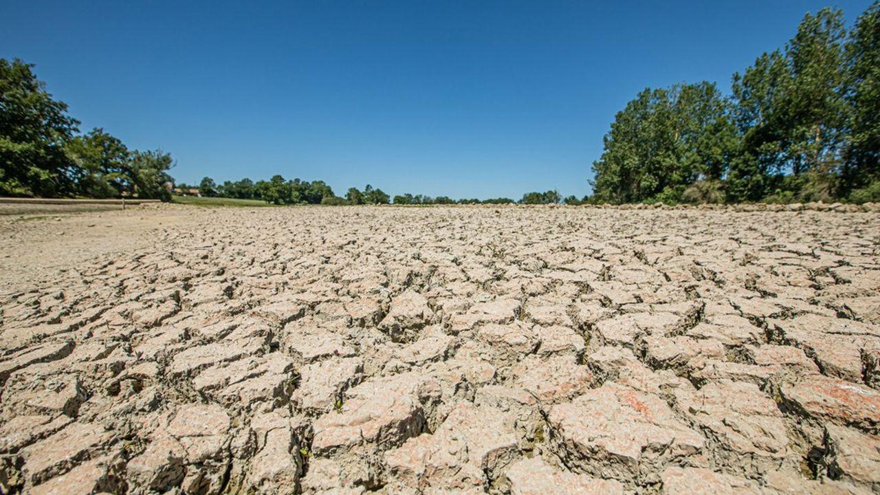 Les pluies sont revenues sur l'Hexagone. Mais il en faudra beaucoup pour effacer le déficit pluviométrique du mois de juillet, à l'origine d'un nouvel été de sécheresse.