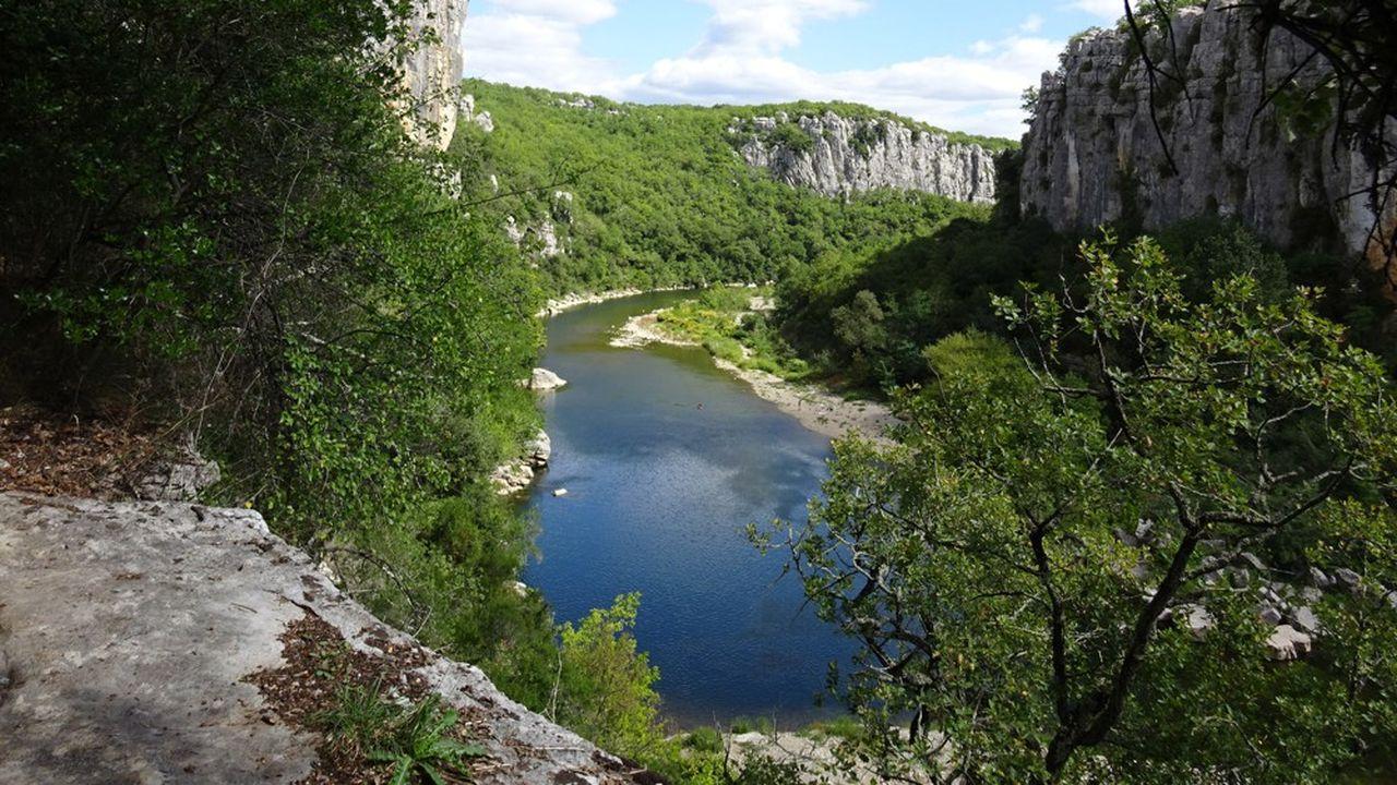 La moitié des substances toxiques détectées dans les rivières du bassin Rhône-Méditerranée sont des pesticides, au premier rang desquels le glyphosate.