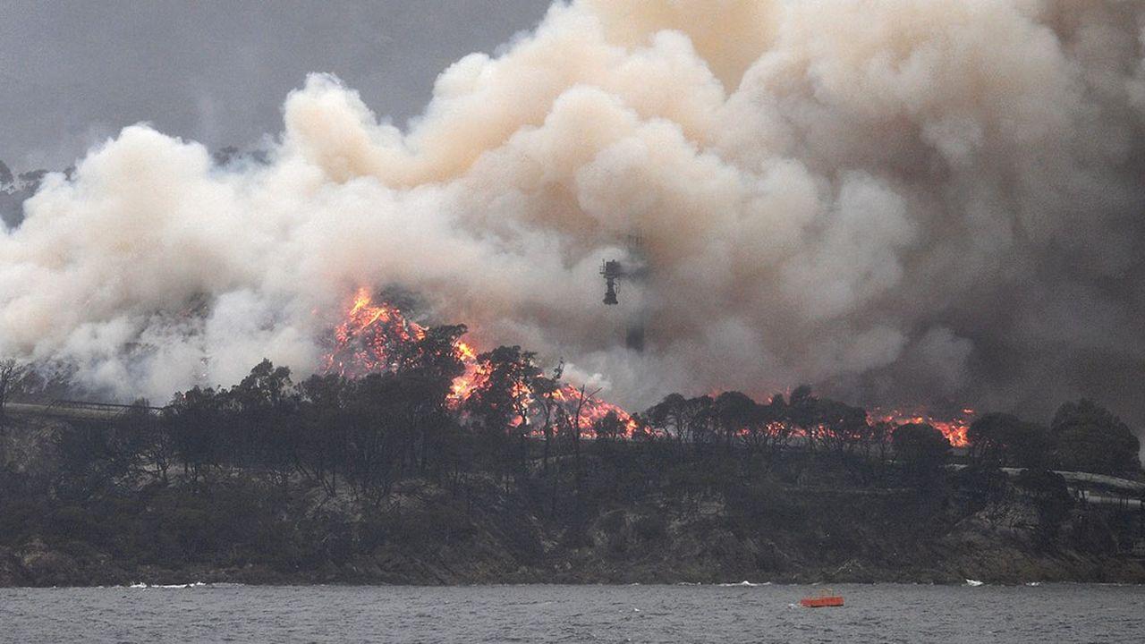 Les méga feux de forêt survenus en Australie ont fait perdre à ce pays la moitié de sa biocapacité et l'ont plongé en situation de déficit écologique pour la première fois de son histoire.